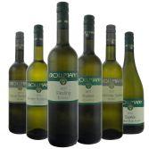Weingut Krollmann, Probierpaket, Weiß & trocken